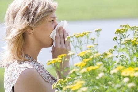 Combating allergy season with a probiotic diet