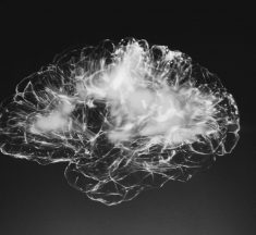 If You do not Exercise, It Can Damage Your Brain